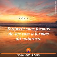 Desperte suas formas de ser com a formas da natureza