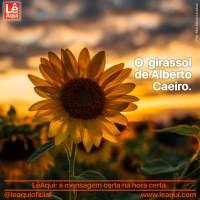 O  girassol de Alberto Caeiro