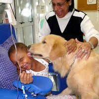 Os benefícios da pet-terapia: a Terapia Assistida por Animais