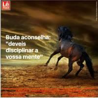 """Buda aconselha: """"deveis disciplinar a vossa mente"""""""